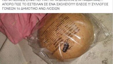 Photo of Σάλος σε Δημοτικό: Βρέθηκε κατσαρίδα στο ψωμί που μοιράστηκε στους μαθητές!