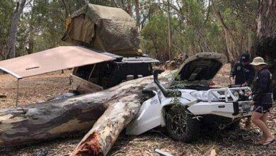 Photo of Αυτό θα πει «είχαν άγιο»! Δέντρο έλιωσε το αυτοκίνητο που έκαναν camping [pics]