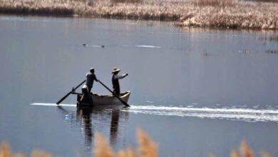 Photo of Απαγόρευση αλιείας στις λίμνες: Μικρή και Μεγάλη Πρέσπα, Βεγορίτιδα, Ζάζαρη – Χειμαδίτιδα, Πετρών, στις τεχνητές λίμνες φραγμάτων Κολχικής – Παπαδιάς και Τριανταφυλλιάς, στις λιμνοδεξαμενές Βεύης και Αμμοχωρίου και στον ποταμό Σακουλέβα του Νομού Φλώρινας